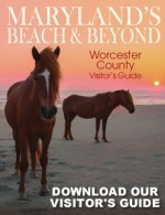 Beach and Beyond Worcester County Visitor Guide